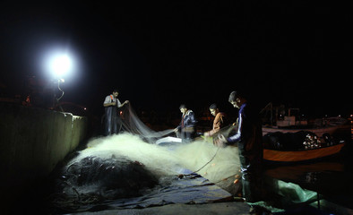 Palestinian fishermen look for fish caught in their net at the seaport in Gaza