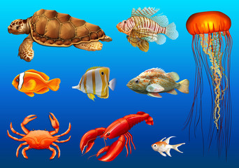 Different kinds of wild animals underwater