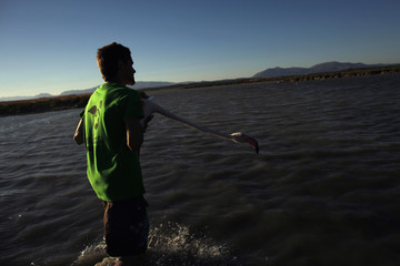 A flamingo is released by a volunteer after it was fitted with an identity ring at the Fuente de Piedra natural reserve