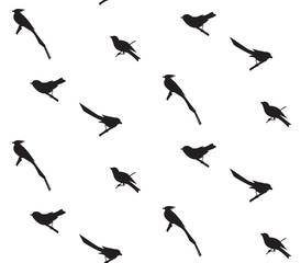 Seamless pattern with birds silhouettes.