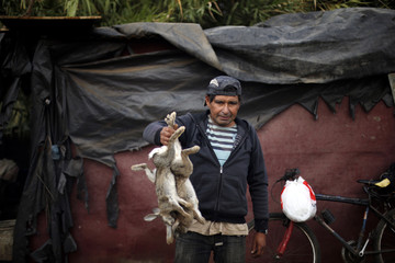 Rabbit hunter Juan poses for a picture with his preys after a workday at the countryside near Santiago city