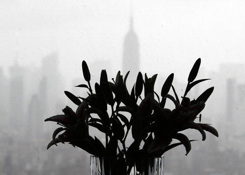 Flowers are seen in silhouette as the Empire State Building is seen through a rainy window at 7 World Trade Center in New York