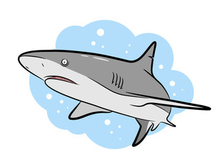 Swimming Grey Shark Vector Cartoon, a hand drawn vector Cartoon Illustration of a grey shark