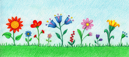hands drawn picture of many beautiful flowers by the color pencils