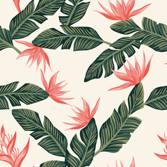 Seamless composition from dark green tropical banana leaves and flowers light yellow background