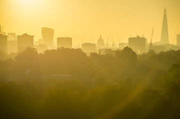Golden sunrise view of the city skyline with parkland greenery in the foreground