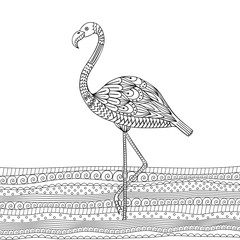 Vector hand drawn flamingo bird. Coloring book for adult