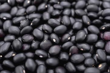 沖縄 宮古島の黒小豆(ササゲ)