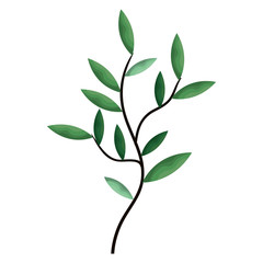 leafs plant decorative icon vector illustration design