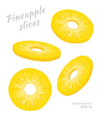 Vector illustration of falling pineapple slices isolated on white background. A cut rings of fresh exotic fruit. Set of four Different angles of view
