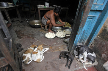 A man prepares snacks next to stray dogs sitting outside a sweets workshop in Kolkata