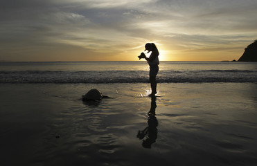 Tourist takes picture of Olive Ridley turtle during nesting season at the La Flor Wildlife Refugee