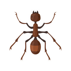 Ant or termite vector illustration in flat style