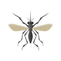 Mosquito icon isolated on white background