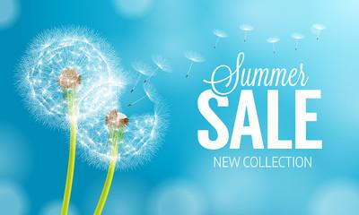 Summer dandelion Sale