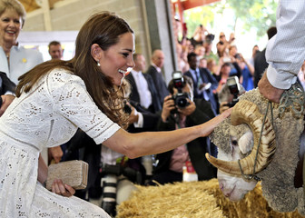 Catherine, Britain's Duchess of Cambridge, pats Fred, the Merino ram, during a visit to the Royal Easter Show in Sydney