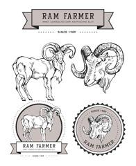 Vintage hand draw ram label.