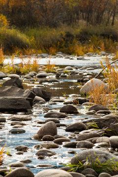 Fall in a side channel Stillwater River Montana