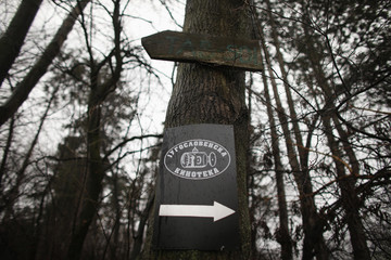 """A sign reading """"Yugoslav Film Archive"""" is seen on a tree in the Avala Film compound in Belgrade"""