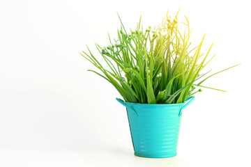 Grass plastic in light blue pot color with sunshine on white backgroun