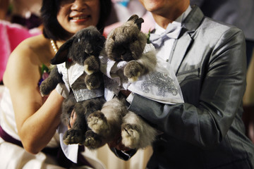 Sterilized pet rabbits dressed in wedding outfits are pictured with their owners during a wedding ceremony in Hong Kong