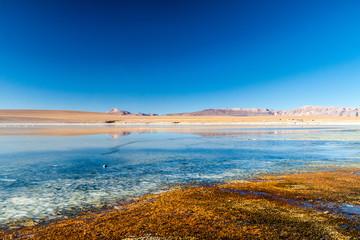 Laguna Collpa lake in Reserva Nacional de Fauna Andina Eduardo Avaroa protected area, Bolivia