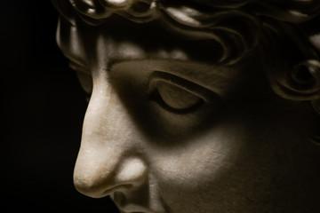 Roman Stone Portrait of WOman