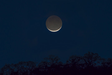 Crescent moon at twilight