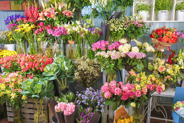 Colorful flowers in shop