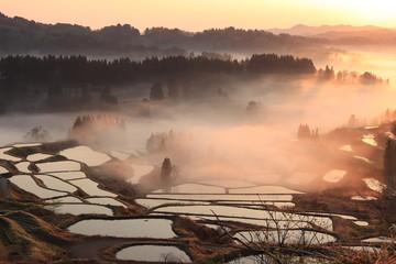 新潟県十日町市にある星峠の棚田と雲海