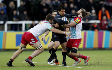 Newcastle Falcons' Juan Pablo Socino in action with Harlequins' Luke Wallace