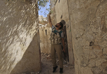 A Free Syrian Army fighter picks jasmine near Hanano Barracks, controlled by forces loyal to President al-Assad, in Aleppo