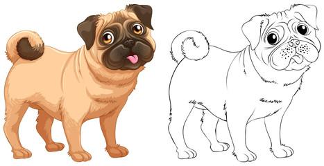 Animal outline for little pug dog