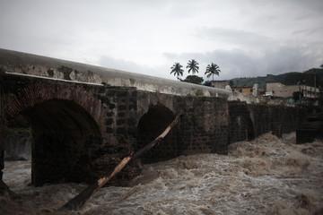 A tree drawn into the Los Esclavos river, swollen by heavy rains, in Cuilapa