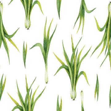 Hand drawn watercolor seamless pattern of Lemon grass.