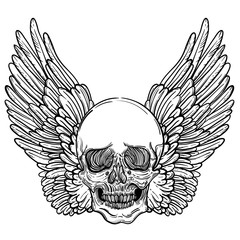 Line art illustration of angel wings, scary skull. Vintage print for St. Valentine s Day. Messenger of death. Sketch for tattoo, hipster t-shirt design, vintage style posters.