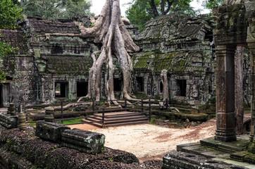 Angkor Prohm temple in Angkor, Cambodia