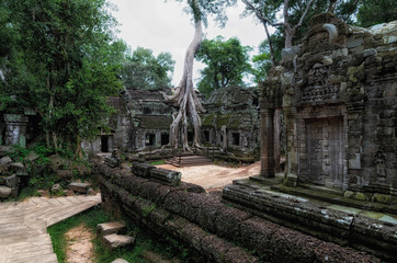 Angkor Prohm temple in Angkor, Cambodia