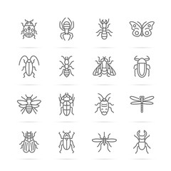 insect vector line icons
