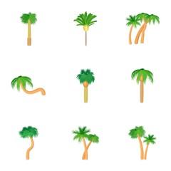 Palma icons set, cartoon style