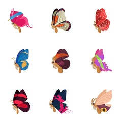 Insects butterflies icons set, cartoon style