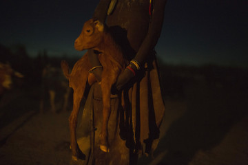 A Turkana girl holds a lamb at the end of the day, inside her family's cattle kraal in the disputed area of the Ilemi triangle