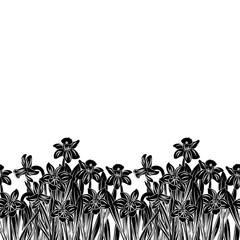Postcard of black small narcissus with white stroke flowers silhouette isolated on white. Vector illustration
