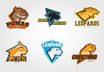 Set mockup template wild cats head symbol, logo, emblem or sticker for branding, printing, sports team. Vector illustration on white background.