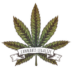 Cannabis leaf vector illustration.