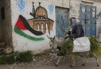 Palestinian villager rides his donkey past a mural in the West Bank village of Awarta near Nablus