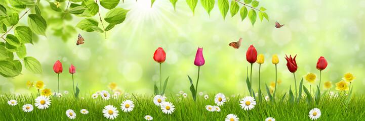 Frühling 442