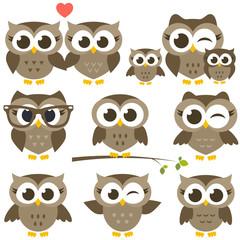 set of cute brown owls