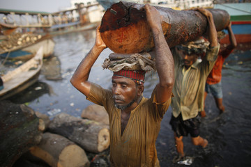 Workers carry a log at a timber factory by the river Buriganga in Dhaka