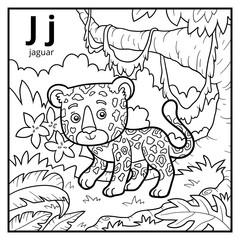 Coloring book, colorless alphabet. Letter J, jaguar